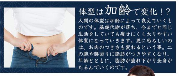 補正屋ガードル『結弦(ゆづる)』体型